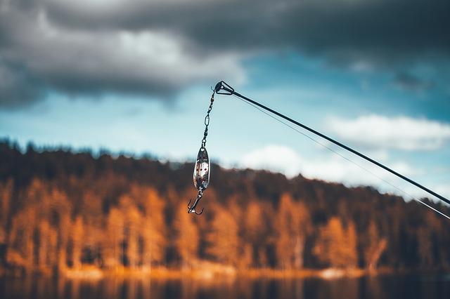 návnada na ryby