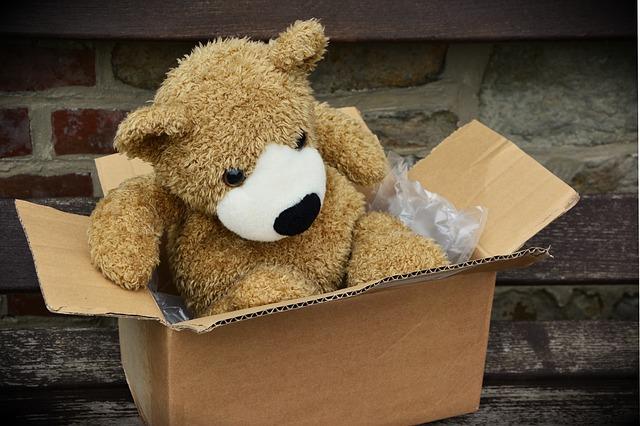medvěd v krabici