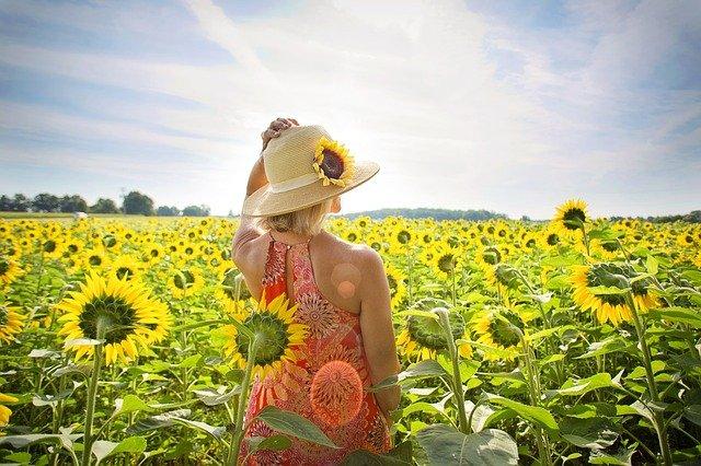 žena na poli slunečnic